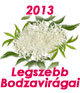 2013. Legszebb Bodzavirgai